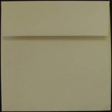 Cougar Opaque Square Envelopes - White & Natural