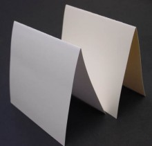 Cougar Opaque Prefolded Square Cards
